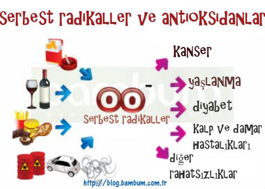 http://blog.bambum.com.tr/serbest-radikaller-ve-antioksidanlar/